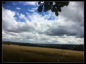 Clouds Over Cornfield