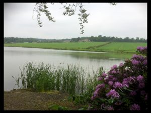 View Across Lake