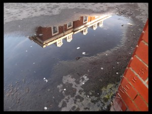 Puddle Reflections - 365 Day Project 2013